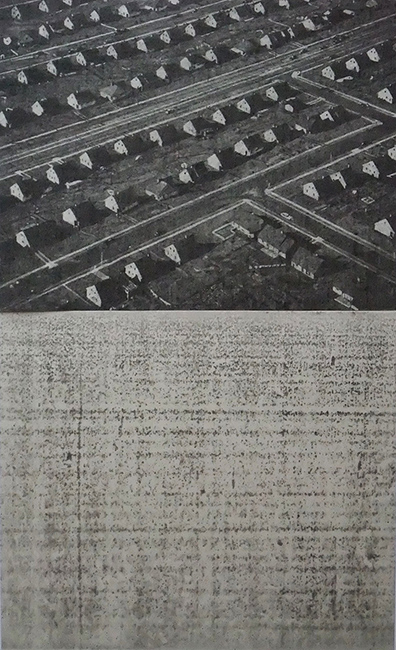 Richard Forster, Levittown Variable II