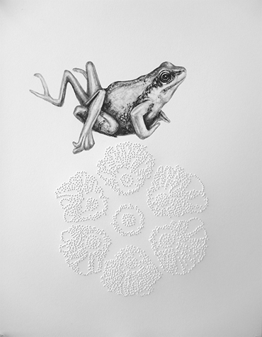 Tanya Chaly, Imperfect Indicators- Frog with Parasite Deformity and Cannibal Bacteria Spores