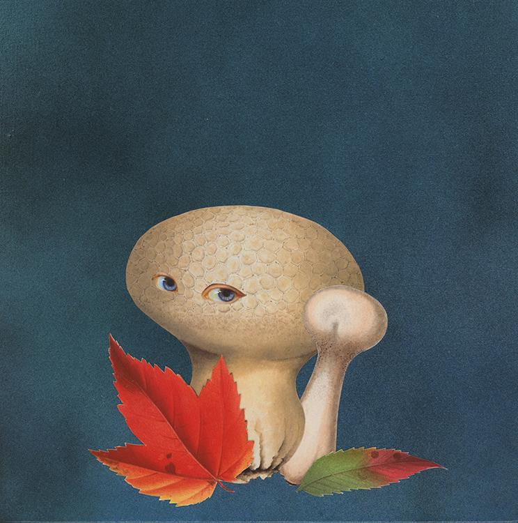Amy Ross - 'Autumn Shroom'